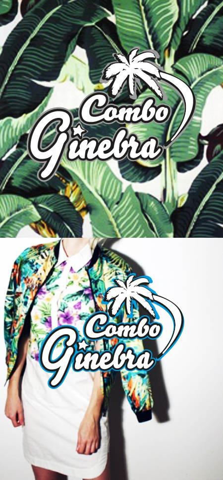 Logo Combo Ginebra